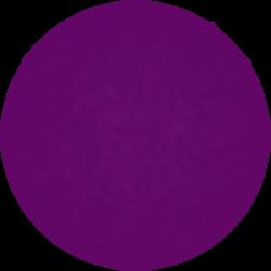 Vernis Permanent N°110 Violet Nacré