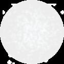 Vernis Permanent N°480 Vièrge  7ml