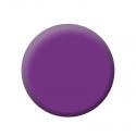 Gel Color Uv N°0510 Iris