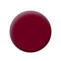 Gel Color Uv N°0220 Pearl Bordeaux 5Ml